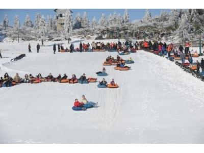 元旦哪里玩儿?仙女山滑雪